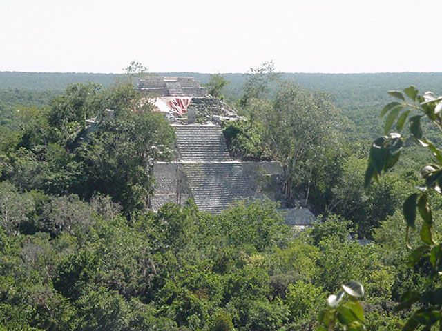 a maya temple in the forest